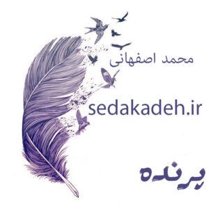 Parandeh mp3 image 300x300 - دانلود آهنگ پرنده از محمد اصفهانی