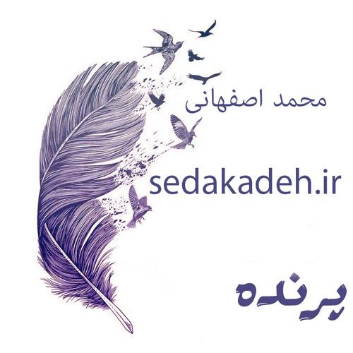 Parandeh mp3 image - دانلود آهنگ پرنده از محمد اصفهانی